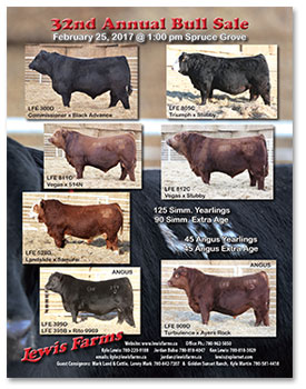Lewis Farms 2017 Bull Sale